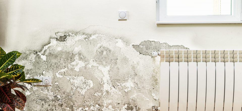 NEGLECTING CAULKING JOINTS: WHAT ARE THE CONSEQUENCES?