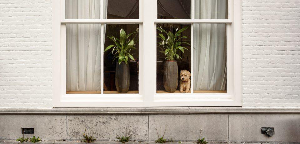 Pourquoi et comment sceller les joints de mortier des allèges de fenêtres et de portes